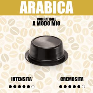 ALT-A-modo-Mio-Barbaro-Arabica