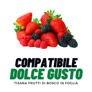 ALT-Tisana Frutti di Bosco-Dolce Gusto-Barbaro
