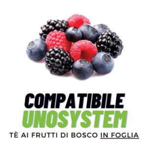 ALT-Tè Frutti di Bosco-UnoSystem-Barbaro